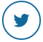 Twitter icon at iToddle.com